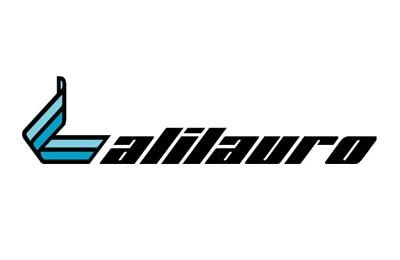 Boek Alilauro snel en gemakkelijk