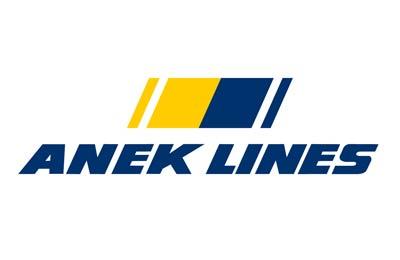 Boek Anek Lines snel en gemakkelijk