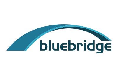 Boek Bluebridge snel en gemakkelijk